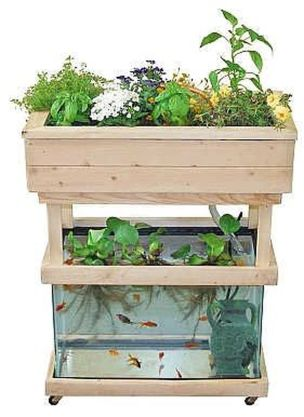Mini Aquaponics with Fish for Home Decorations 20