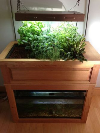 Mini Aquaponics with Fish for Home Decorations 36