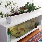 Mini Aquaponics with Fish for Home Decorations 6
