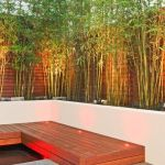 Cool Privacy Fence Wooden Design for Backyard 65