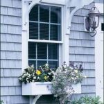 Perfect Shade Plants for Windows Boxes 53
