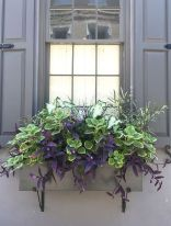 Perfect Shade Plants for Windows Boxes 62