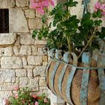 Perfect Shade Plants for Windows Boxes 76