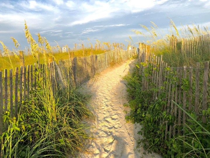 beach path to the ocean with sea grass, fencing, and lots of sunshine