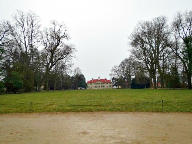 Mount Vernon 6