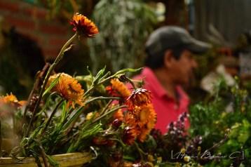 Un hombre atiende a sus clientes mientras vende hiervas.