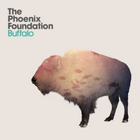buffalo-phoenix-foundation Top Albums 2011