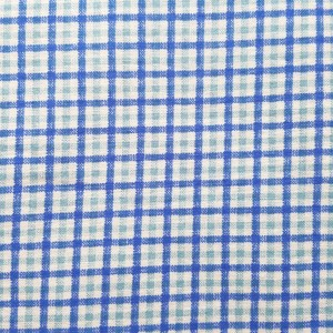 blue_green_gingham