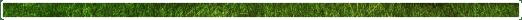 تحتوي هذه الصورة على سمة alt فارغة; اسم الملف هو 688657ERWWWWWWWWWWT.png