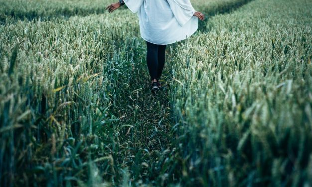 How to Find the Balance Between Stewardship and Survival