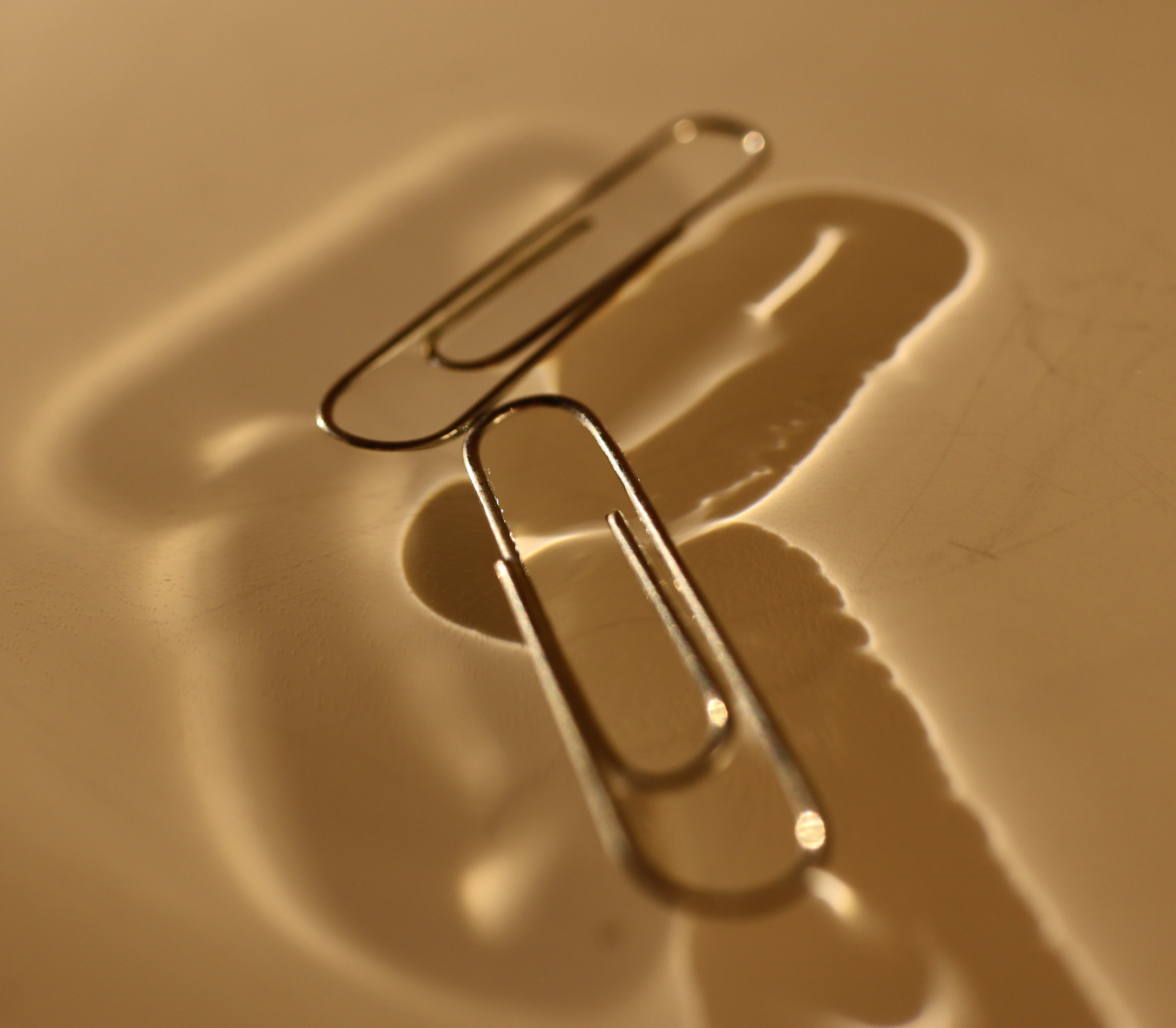 surface tension can make paperclips float
