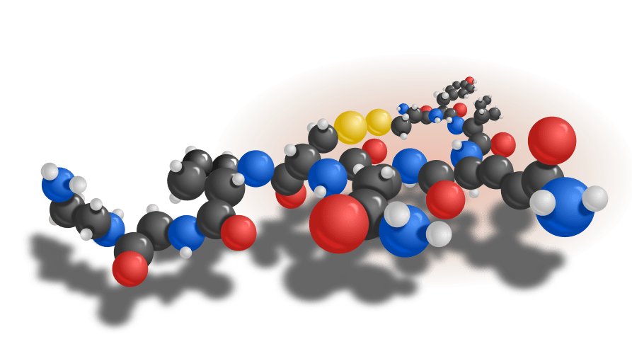 oxytocin our chemical of choice for a love potion