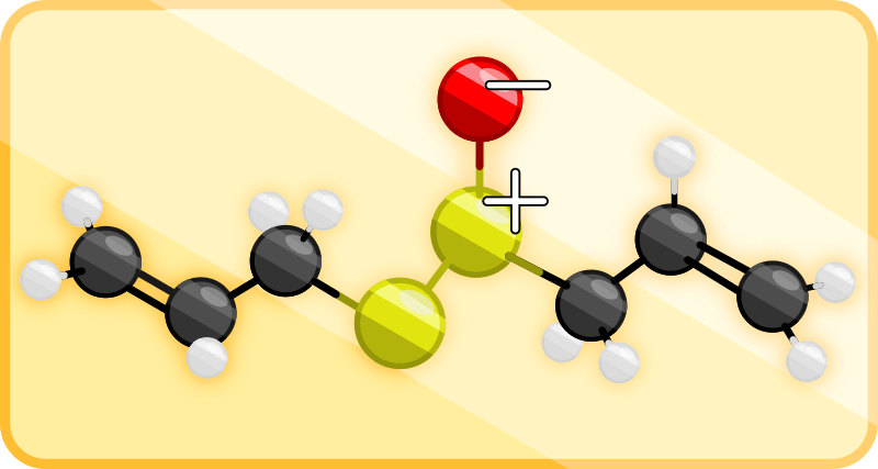 allicine structure bonding with charge