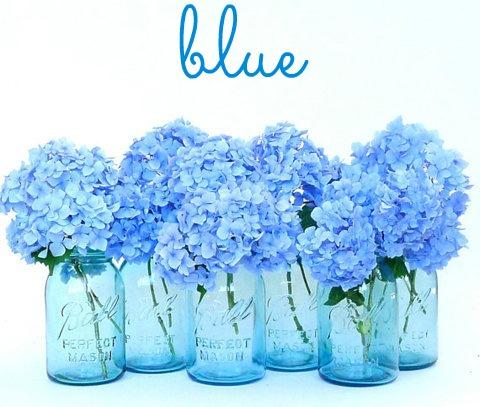 FMF BLUE
