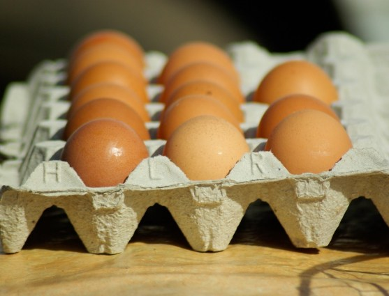 eggs-664848_1280