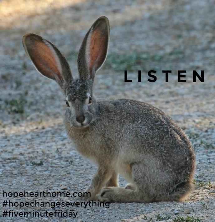 fmf_listen