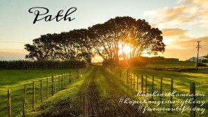 five minute friday: path