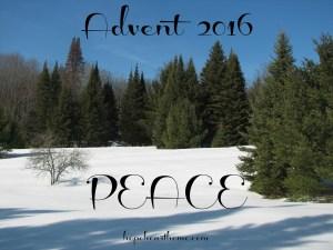 quietude: december 18 2016