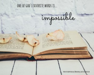 IMPOSSIBLE: One of God's Favorite Words!