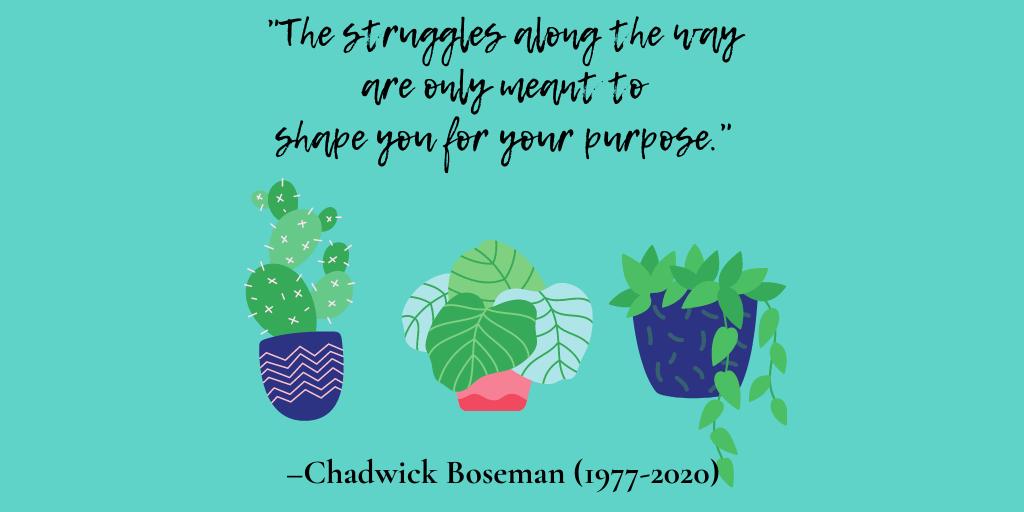 Chadwick Boseman - purpose