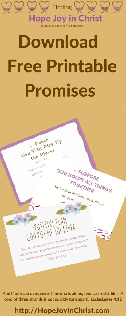 Hope Joy In Christ Free Printable Promises (Christian Marriage, Biblical Wifehood, (Reclaiming Hope & Joy in Christ))