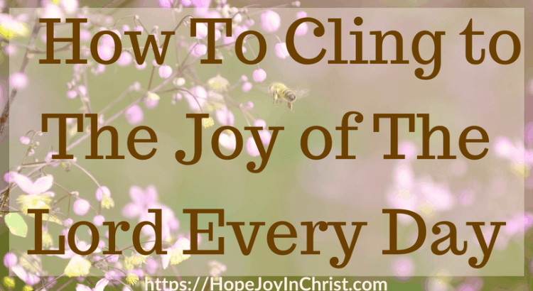 How To Cling to The Joy of The Lord Every Day #ChristianLiving #TheJoyOfTheLord #TheJoyOfTheLordIsMyStrength #TheJoyOfTheLordquotes #TheJoyOfTheLordScriptures #TheJoyOfTheLordart #Joy #JoyScriptures #JoyQuotes #prayerWarrior #JoyPrayer #JoyCards