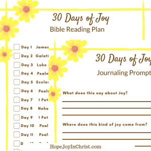 30 Days of Joy Reading Plan square #30DayBibleReadingPLan #30DayChallenge #30DaysOf #ChoseJoy #JoyQuotes #JoyScripture #FreePrintable