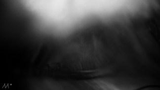 preteatrillos-10-jpg_effected