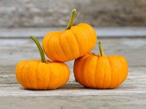 Pumpkin 'Jack Be Little'