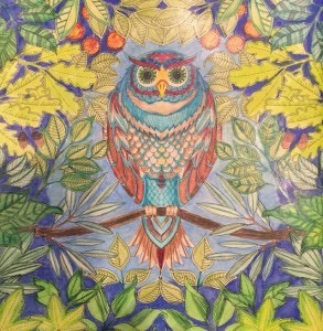 Owl Coloring Activity