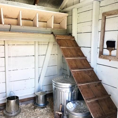 Chicken Coop 101