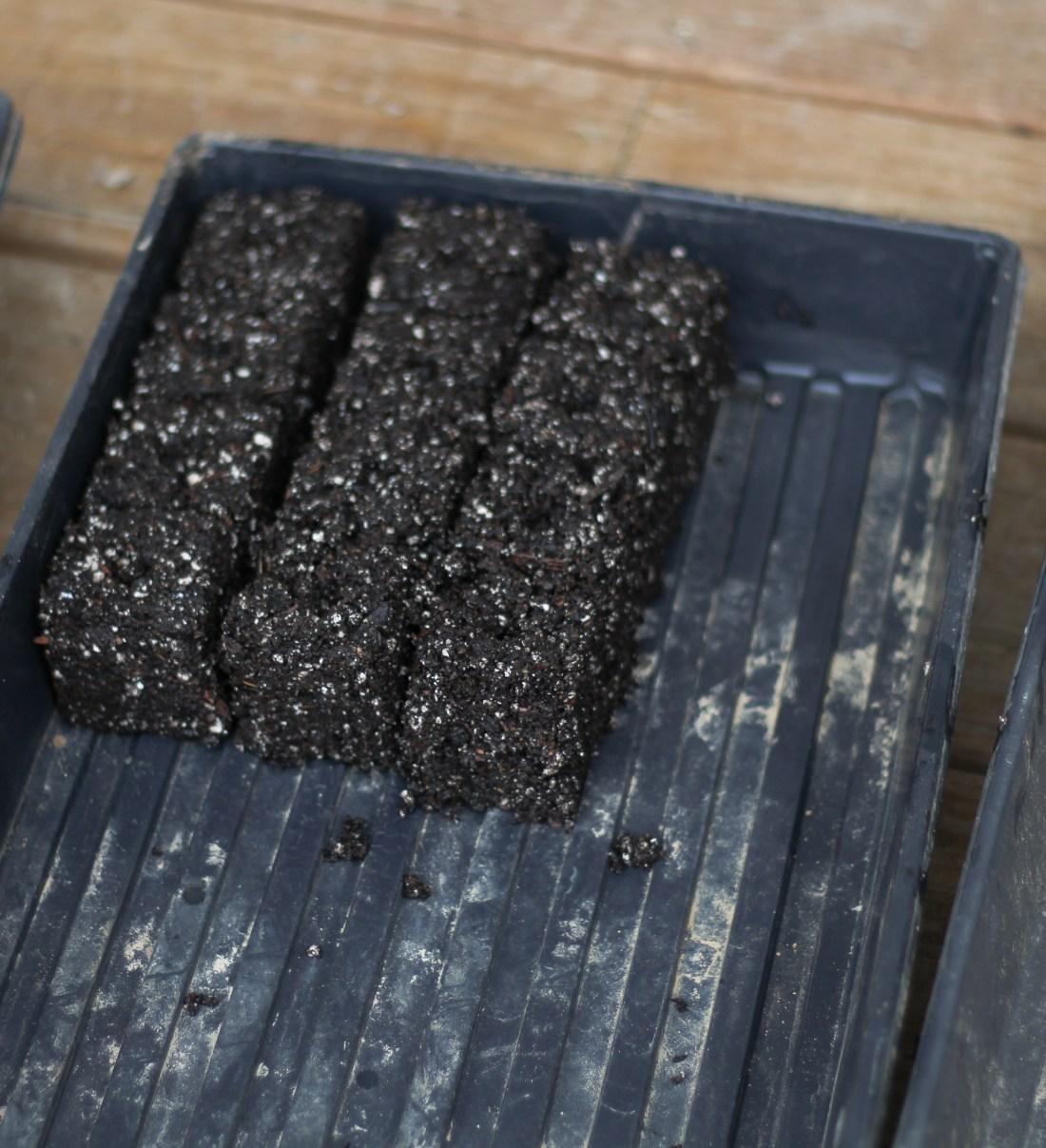 soil blocking