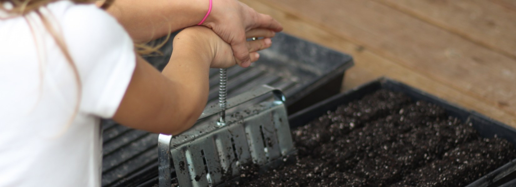 Soil Blocking – A Simple & Sustainable Seed Starting Method