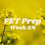 FET Prep Week 24: Good to Go! | Starting PIO Shots | Ways to Thicken Uterine Lining for Embryo Transfer