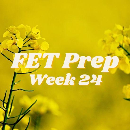 FET Prep (9)
