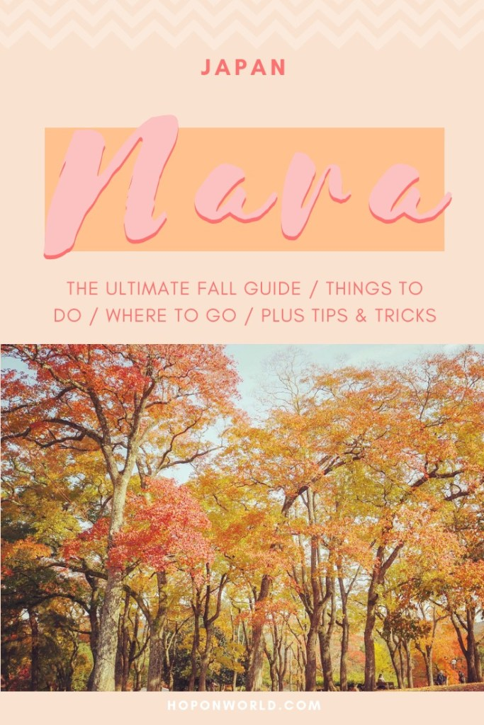 Nara   Japan // Looking for #daytrip #inspiration from #kyoto or #osaka? Then be sure not to miss the wonderland of #nara - a quiet little town where deer roam freely. Get great insights on what not to miss in this Nara One Day Itinerary. #japan #nara #japantravel #travel #naradeerpark #prettyplaces #autumntravel #daytrips #kansai #osakadaytrips #kyotodaytrips