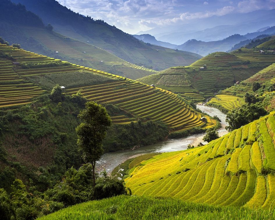 Vietnam Complete Travel Guide // Discover the absolute best places to visit in Vietnam in this comprehensive guide. We highlight everything you need to know about planning a Vietnam itinerary, plus pro tips on what to do and where to go in Vietnam. #vietnam #southeastasia #vietnamtravel #vietnamitinerary #travelplanning #wheretogoinvietnam #travelguide #firsttimersguide