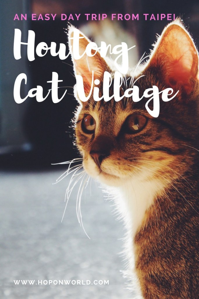 Taiwan | Houtong Cat Village | Easy day trip from Taipei | #daytrip #taipei #taiwan #houtongcatvillage
