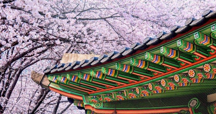 The Best Time to Visit Seoul: Season-by-Season
