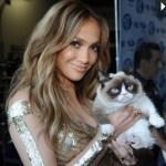 """Hoppics.com - $100 Million Grumpy Cat Fortune"""
