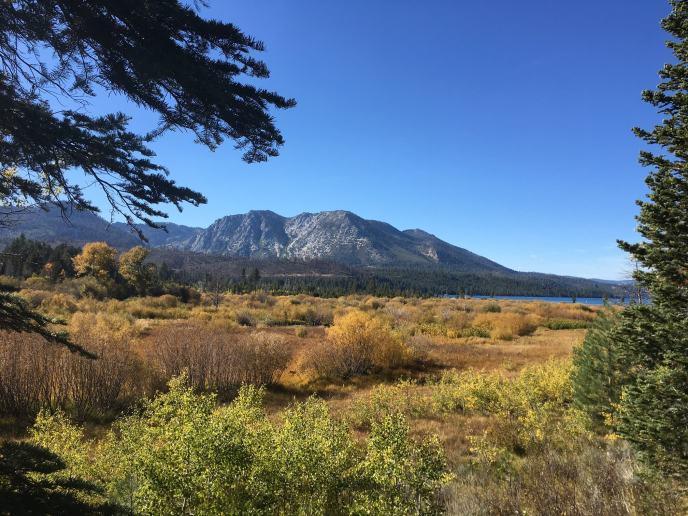 Lake Tahoe Hiking Trail