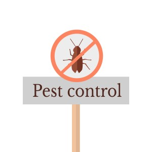Daycare pest control is a must, but be sure to hire a professional and consider natural alternatives.