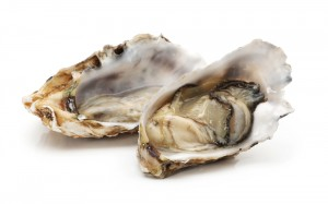 oyster-shucked-