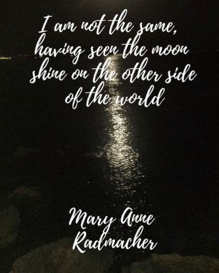 I am not the same, having seen the moon shine on the other side of the world Mary Anne Radmacher (3)