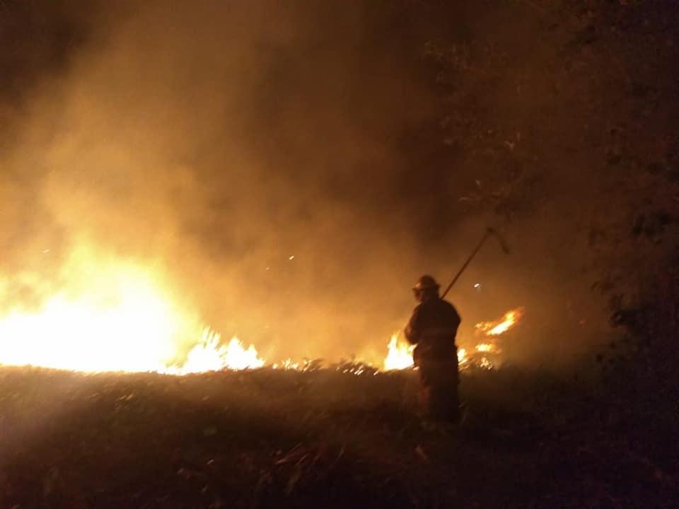 Cada vez se presentan incendios que afectan a la fauna y flora del cantón Loja. (Foto cortesía Cuerpo de Bomberos de Loja)