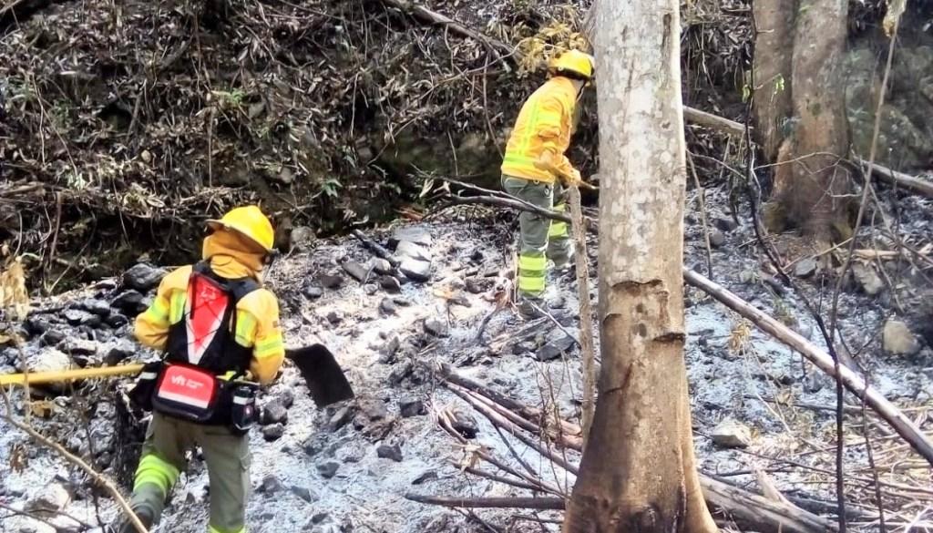 Los bomberos desconocen la causa que produjo ese percance.