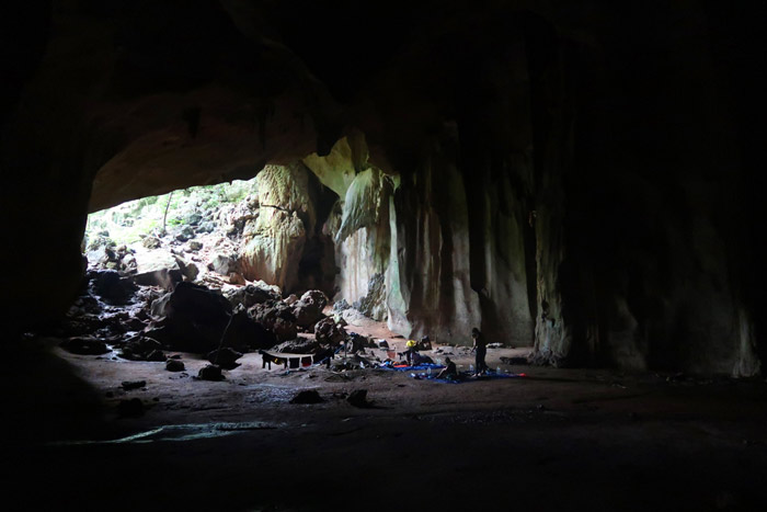 Cueva Selva dormir Malasia