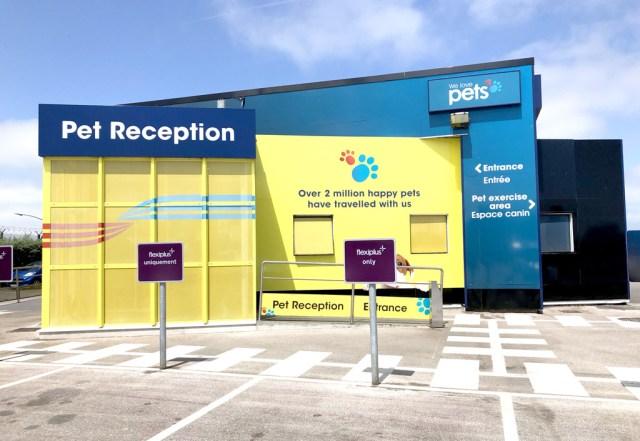 Pet reception à Calais
