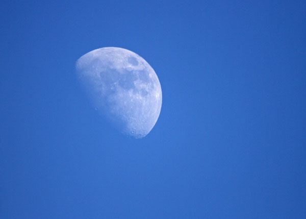 The Moon at the Horicon Marsh