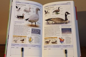 American Museum of Natural History Birds of North America: Eastern Region